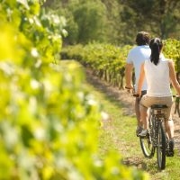 Things To Do And Places To Go When In The Hunter Valley Area
