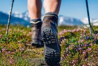 Explore The Adventure In Your Area!