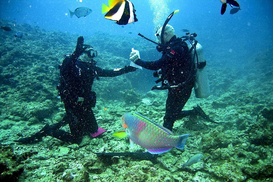 divers-681517_960_720